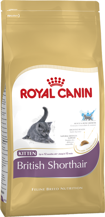 ROYAL CANIN KITTEN BRITISH SHORTHAIR