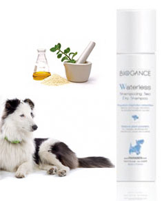 BIOGANCE WATERLESS SHAMPOING SEC